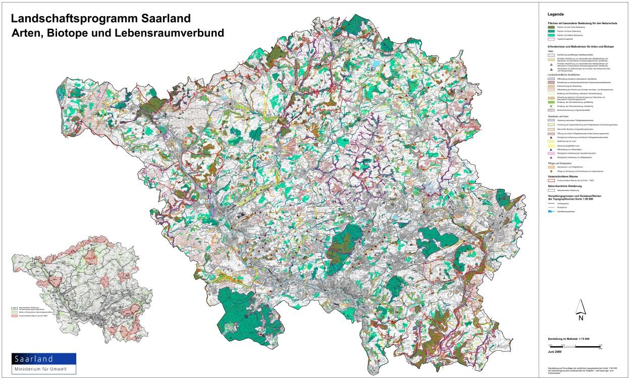 LAPRO2009 - Prioritäre Überführung von standortfremden Waldbeständen auf Standorten mit besonderem Entwicklungspotenzial, kleinflächig