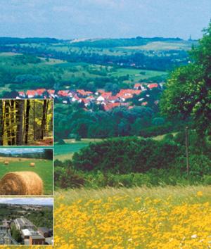 Landschaftsprogramm